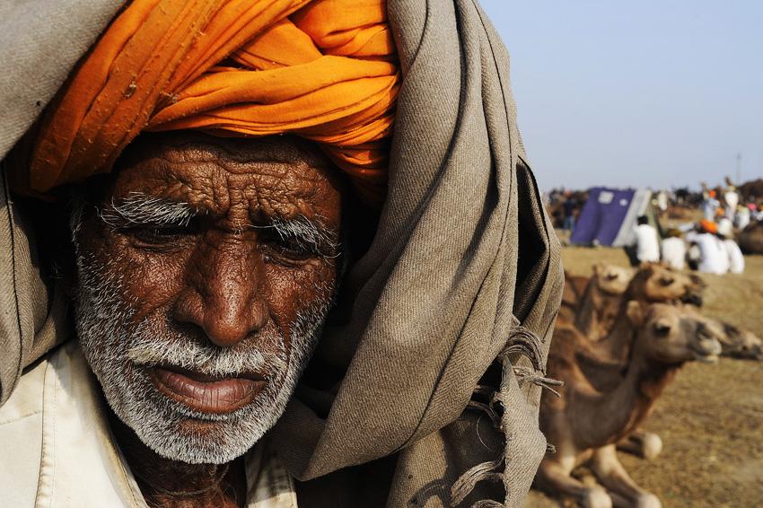 INDE-rajasthan-foire-dromadaire-Pushkar.jpg